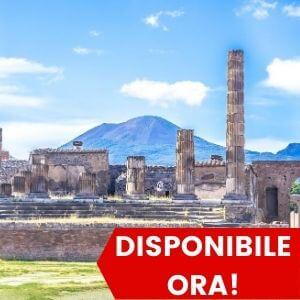 Tour di Pompei e del Vesuvio da Sorrento