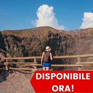 Tour di Pompei e Vesuvio da Napoli