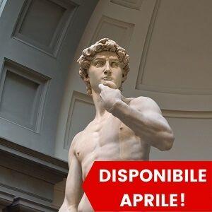 Tour Pomeridiano dell'Accademia di Firenze