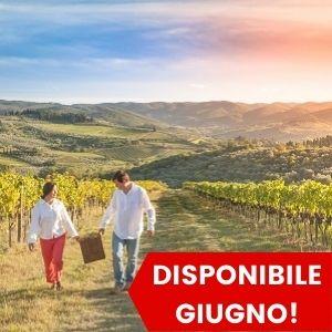 Mezza Giornata Degustazione Chianti da Firenze