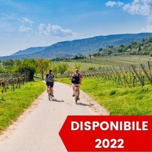 Tour in Bici di Un Giorno in Toscana