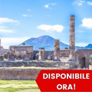 Tour di Pompei da Roma - Al tuo ritmo