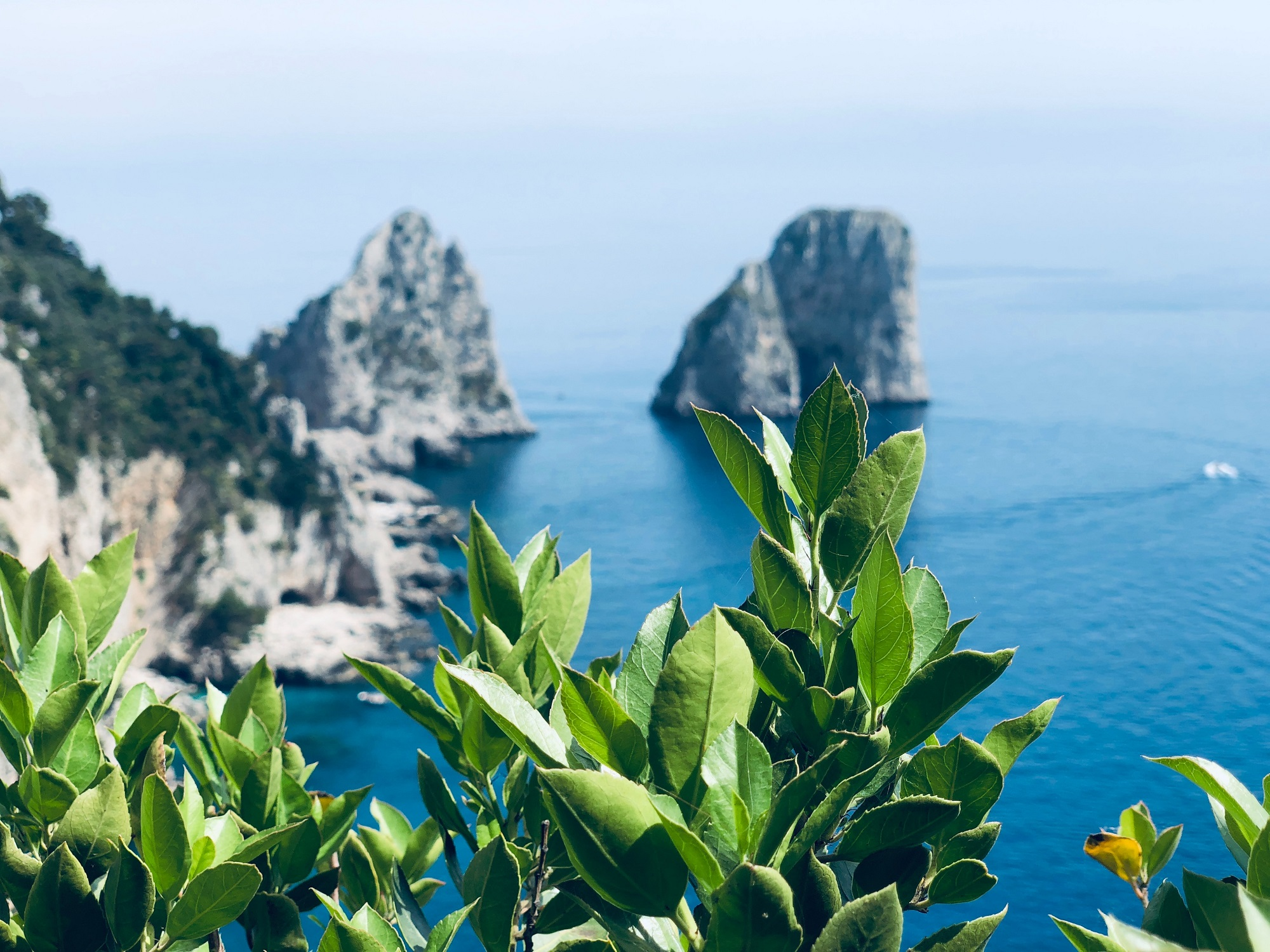 What to see in a day on the Island of Capri?