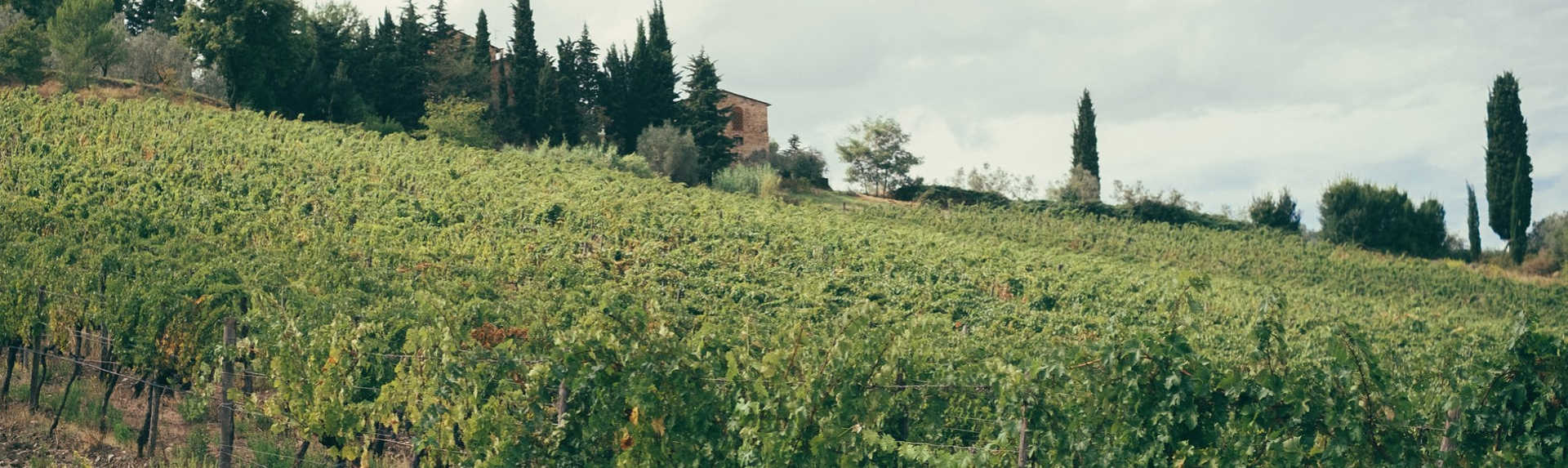 What is the best way to get around Tuscany?