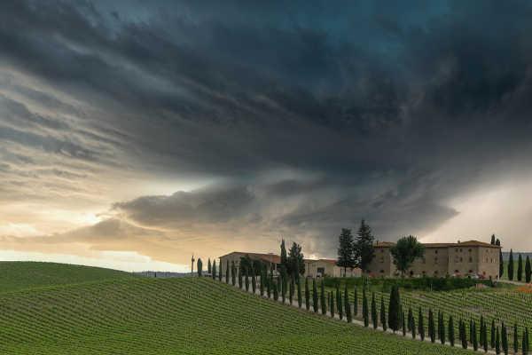 Tuscany Winery